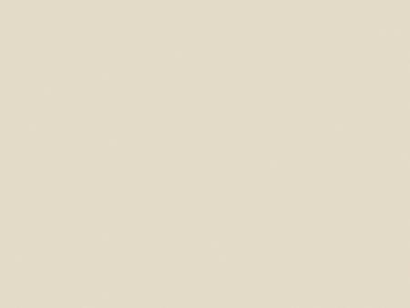 Белая устрица RAL1013