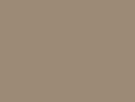 Серый бежевый RAL1019